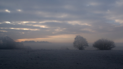 Landscape image, 'Crouch Hill in a sea of fog and the dawn'